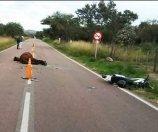 foto: Motociclista murió tras atropellar a un caballo en la ruta