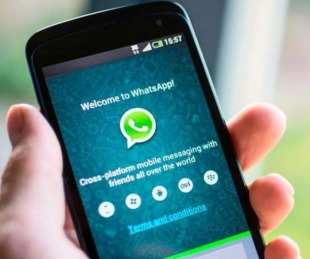 foto: Whatsapp desapareció de las búsquedas de Google Play