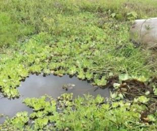 foto: Jóvenes encontraron el cadáver de un hombre en una zanja