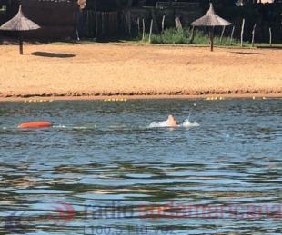 foto: Nicolás Segurado unió Itatí y Corrientes, nadando por el Paraná