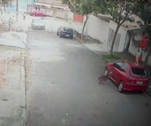 foto: Arriesgó su vida para salvar a un nene que era atacado por un pitbull
