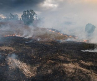 foto: ¿Nos va a afectar el humo de los incendios de Australia?