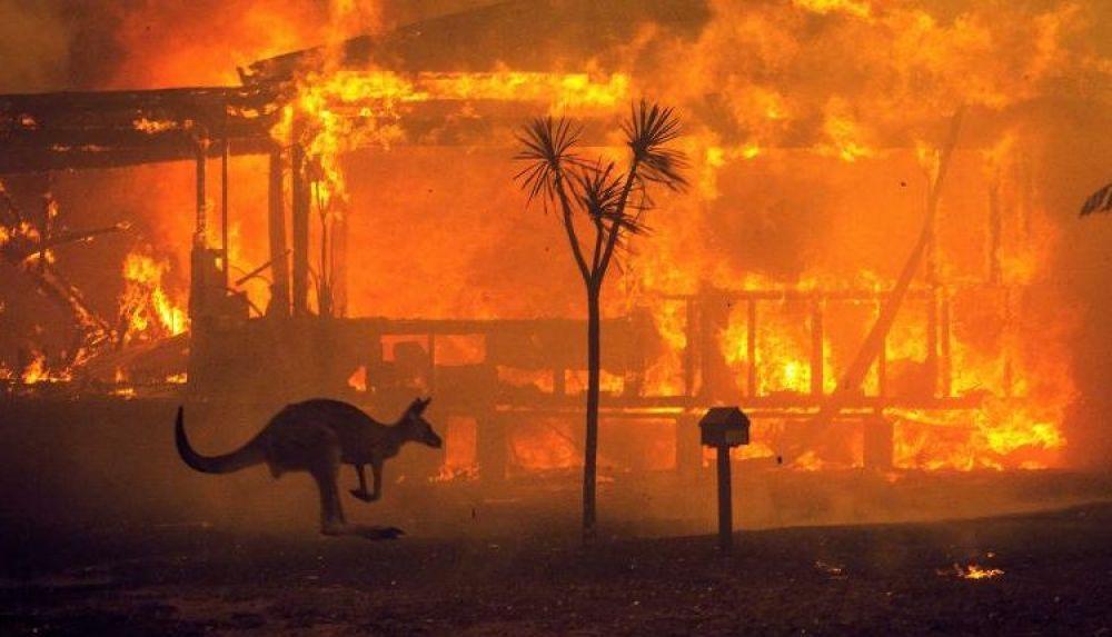 foto: Australia: La llovizna fue un gran alivio que ayudó en algunas áreas