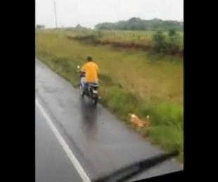 foto: Imputan a un hombre por arrastrar a un perro por la ruta con su moto