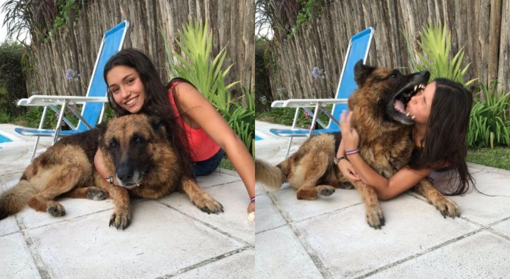 ¿Por qué el perro de la sesión de fotos mordió a la joven?