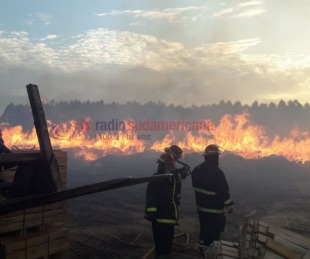 foto: Incendio en zona de aserraderos alertó a vecinos de Santa Rosa