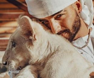 foto: Las polémicas fotos de Maluma con un león