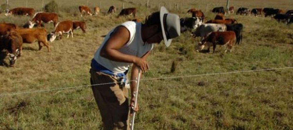 foto: Peón rural recibió una descarga eléctrica y está grave