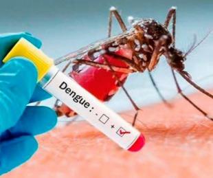 foto: Corrientes: hay 721 casos de dengue y piden seguir la prevención
