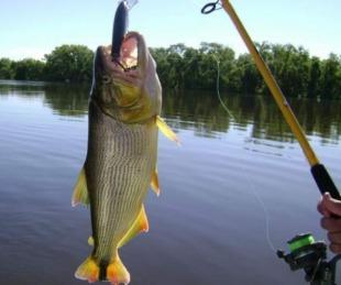foto: Emergencia Sanitaria: se prohíbe la pesca deportiva y comercial