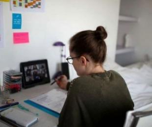 foto: La Universidad de Harvard lanzó cursos gratuitos para la cuarentena