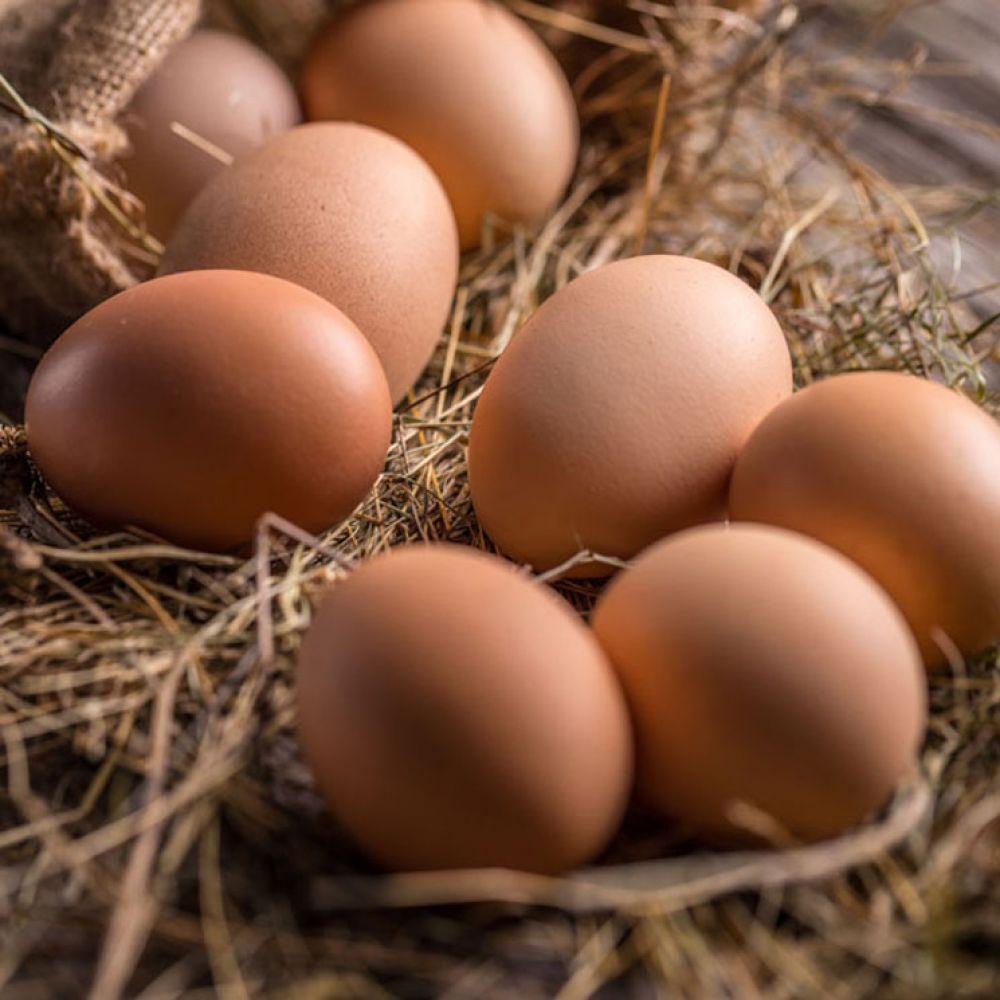 foto: La Mafia del Huevo: productores que aumentan indiscriminadamente