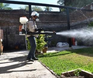 foto: Corrientes: No hubo nuevos casos de dengue en las últimas 24 horas