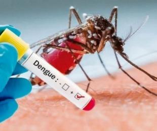 foto: Se mantiene plana la curva de casos de dengue en Corrientes
