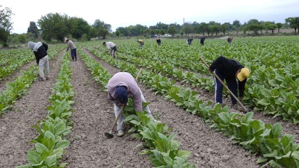 foto: Si no pagan, en 15 días nos estarían cortando la obra social