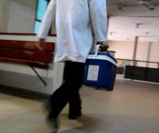 foto: Argentina: Desde el comienzo de la cuarentena hubo 214 trasplantes
