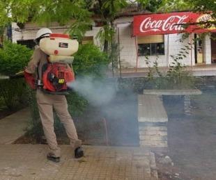 foto: Dengue: Con seis nuevos casos en Capital, el total asciende a 1173