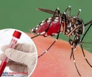 foto: Dengue: Se mantienen en 1209 los casos registrados en Corrientes