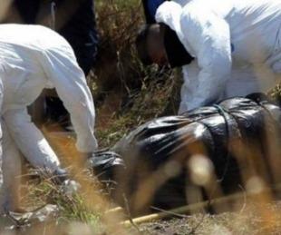 foto: México: encuentran 75 bolsas con restos humanos en fosas clandestinas