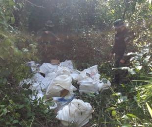 foto: Secuestraron cargamento de más de media tonelada de marihuana