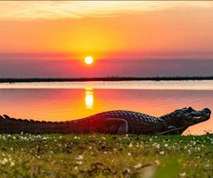 foto: Corrientes: integración regional y naturaleza para reactivar el turismo