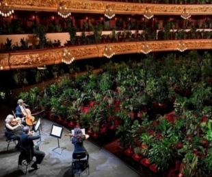 foto: La ópera de Barcelona reabrió con un concierto para 2.300 plantas