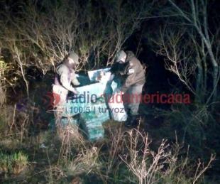 foto: Hallaron más de media tonelada de droga oculta entre malezas
