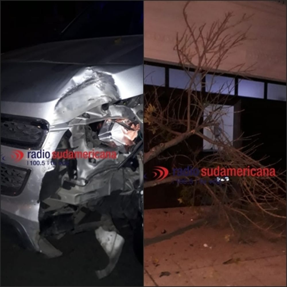 Perdió el control del vehículo, subió a la vereda y derribó un árbol