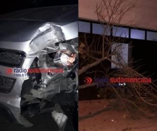 foto: Perdió el control del vehículo, subió a la vereda y derribó un árbol