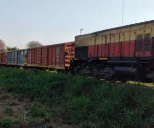 foto: Se arrojó a las vías del tren pero el Belgrano Cargas logró frenar