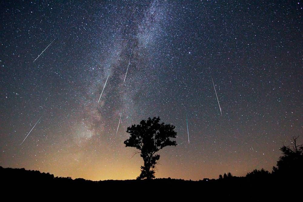 La lluvia de estrellas más importante del año: dónde y cuándo verlas
