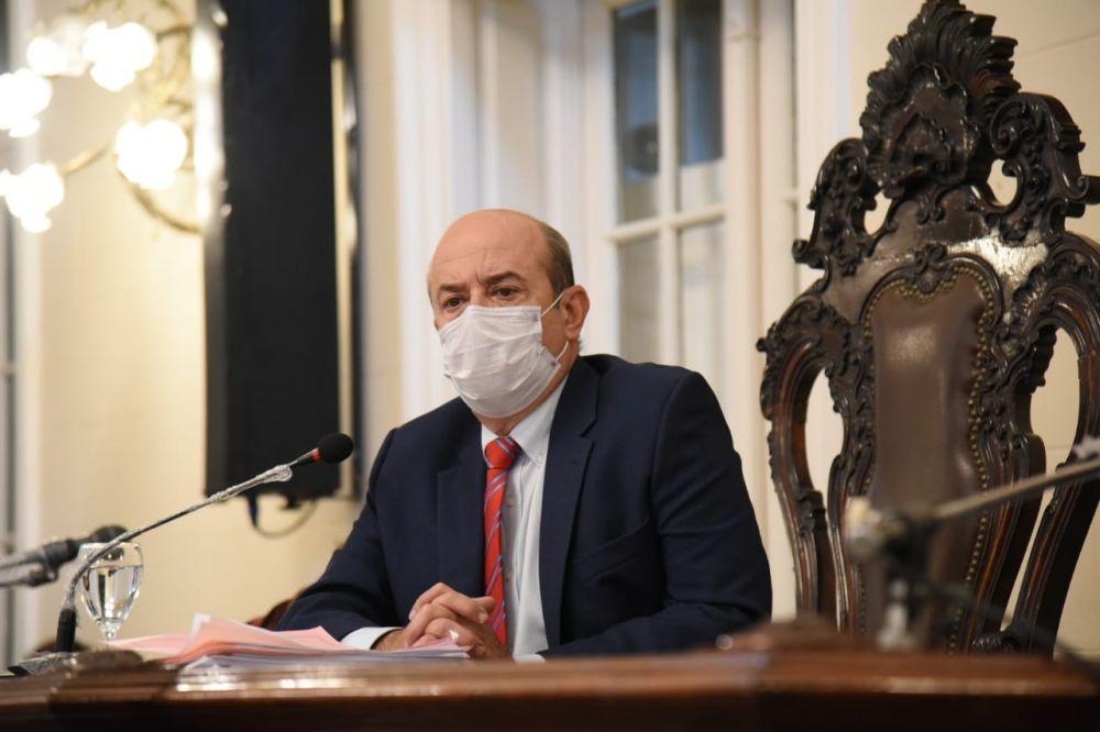 Senado declaró monumento natural al Ave Capuchino Iberá