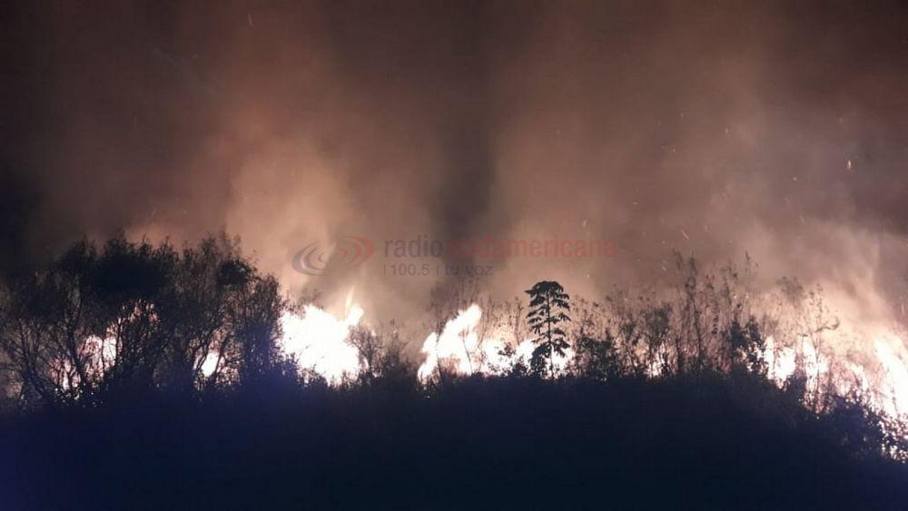 Importante incendio de pastizales tuvo en vilo a todo Santa Ana