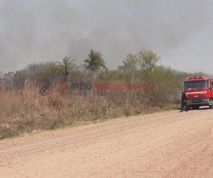 foto: Bomberos de la Policía sofocaron  quema de pastizales en el Pirayuí
