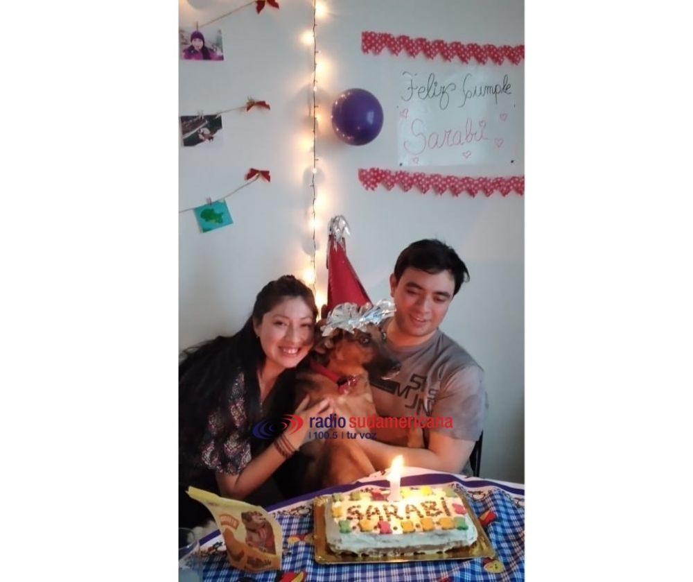 Mascotas: Sarabi cumplió un año y mirá cómo lo festejó