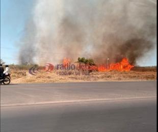 foto: Sofocaron un voraz incendio cerca del Aeropuerto de Corrientes