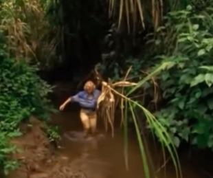 foto: Sobrevivió a un accidente aéreo y, perdida en la selva, halló su pasión
