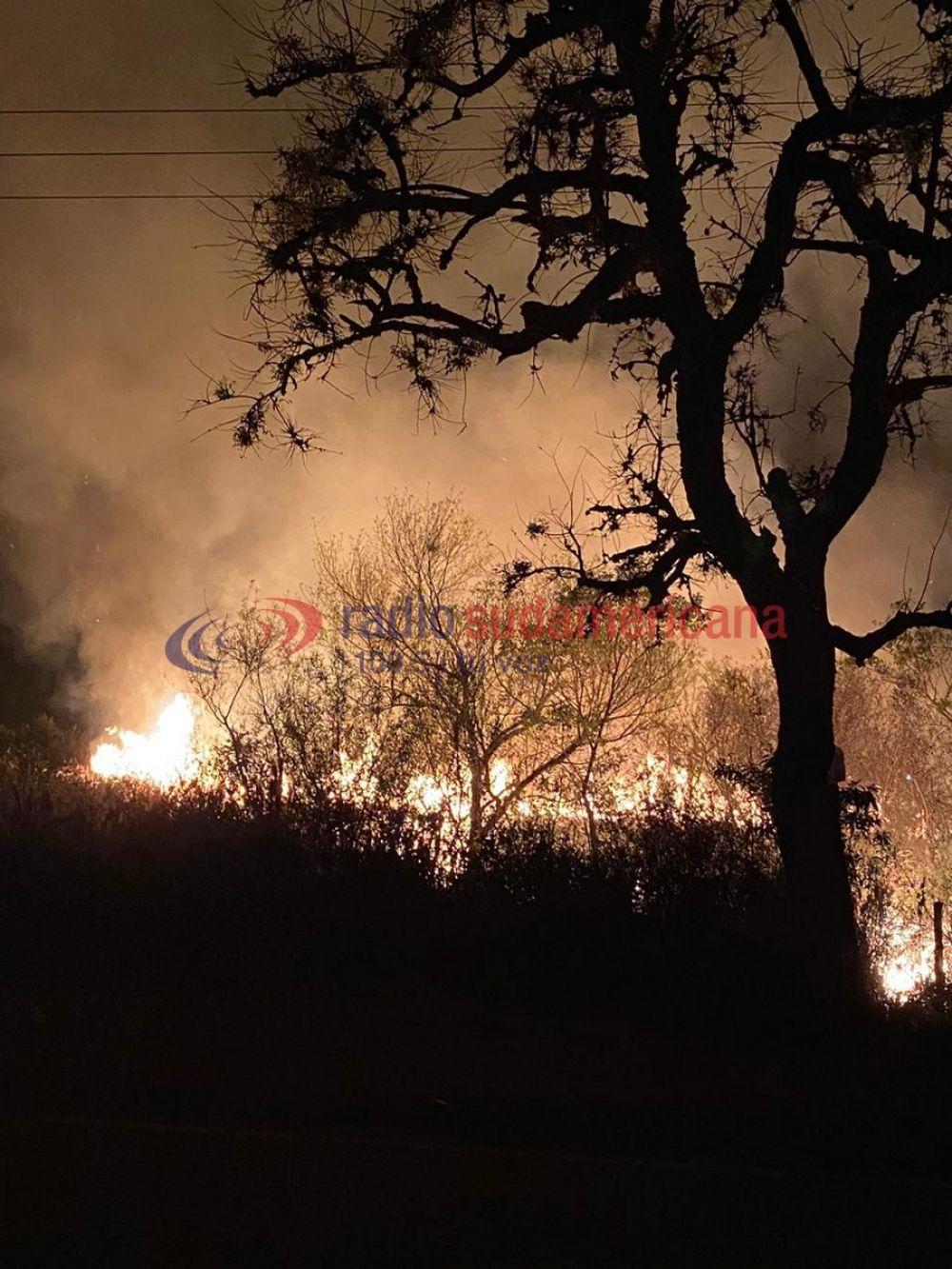 Tremendo incendio nuevamente afectó a campos de Santa Ana