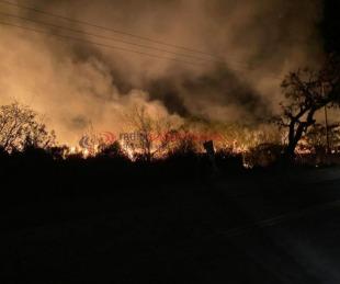 foto: Tremendo incendio nuevamente afectó a campos de Santa Ana