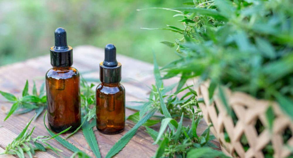 Libres declaró de Interés Sanitario el Aceite de Cannabis como uso medicinal