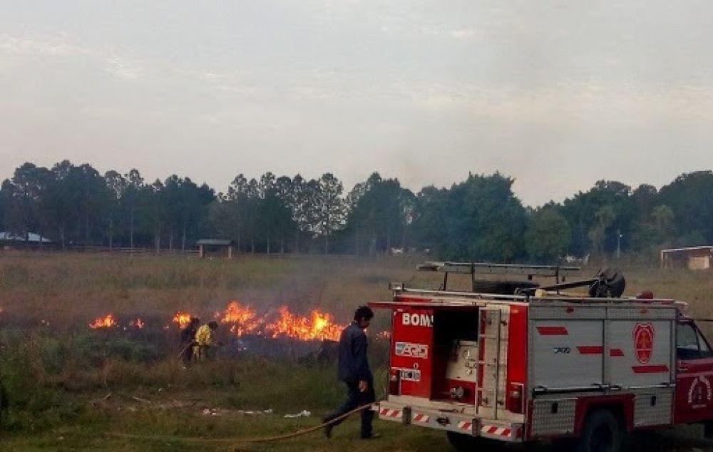 Tenemos que ver cómo podemos premiar y ayudar a los bomberos