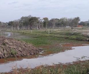 Laguna Brava: