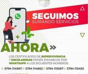 foto: El IPS suma servicios online