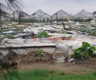 Fotos y videos: fuerte tormenta dejó importantes destrozos en Santa Lucía