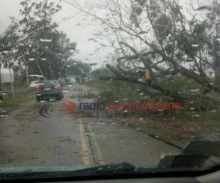 foto: Provincia trabaja para restaurar la energía en Sata Lucía