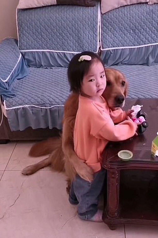 El video de la mascota que defendió a una niña de la furia de su madre
