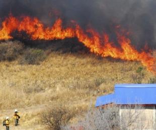 foto: Código ambiental: en que consiste y cuáles son sus objetivos