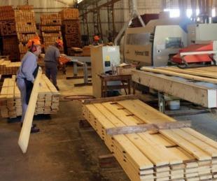 foto: Bella Vista: novedades para emprendedores del sector productivo
