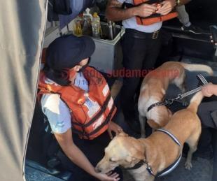 foto: Jóvenes desaparecidos: División Canes se sumó a la búsqueda