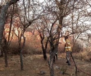 foto: Córdoba: extinguen focos activos de incendios forestales